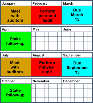 Audit Timetable.png
